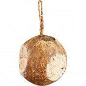 Vogelsnack Gevulde Kokosnoot